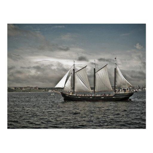 Tall Ship Silva Halifax Postcards