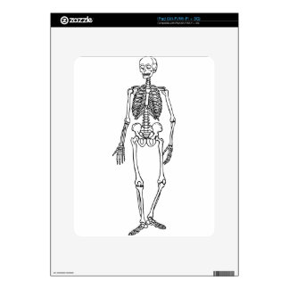 Tall Skeleton Decal For The iPad