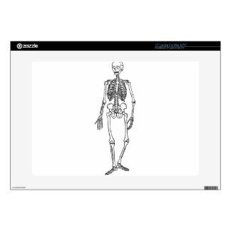 Tall Skeleton Decals For Laptops