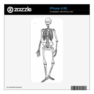 Tall Skeleton Skins For The iPhone 4