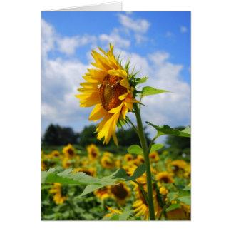Tall Sunflower Card