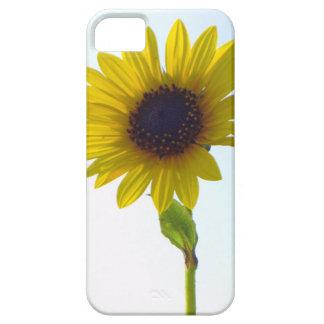 Tall Sunflower iPhone 5 Case