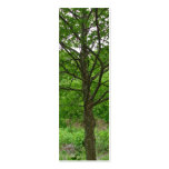 Tall Tree Bookmark Business Cards