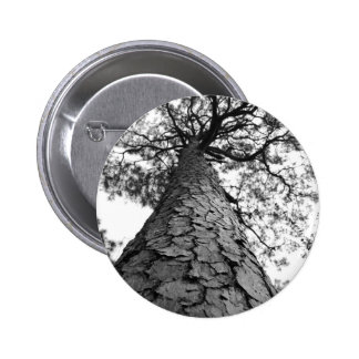 Tall Tree BW Button