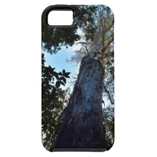 TALL TREE CANOPY TASMANIA AUSTRALIA iPhone SE/5/5s CASE