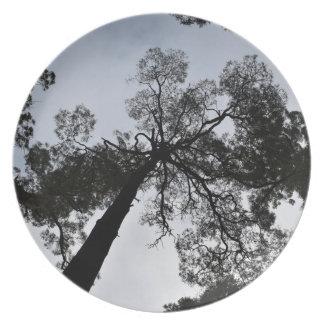 TALL TREE CANOPY TASMANIA AUSTRALIA MELAMINE PLATE