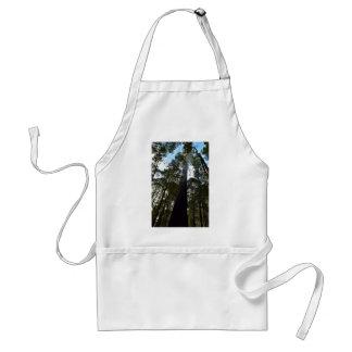 TALL TREE MOUNT FIELD NATIONAL PARK TASMANIA ADULT APRON