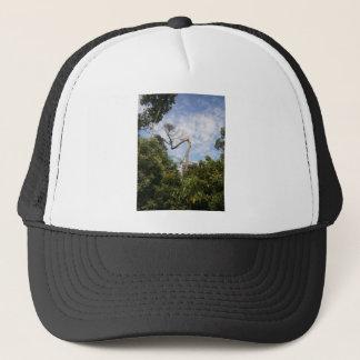 Tall tree trucker hat