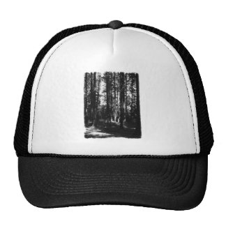 Tall Trees in Black and White Mesh Hat