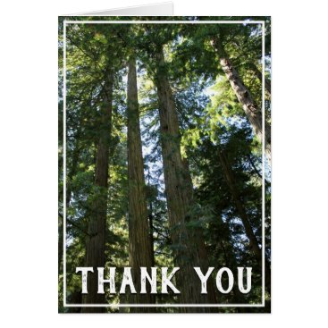 Tall Trees Thank You Card