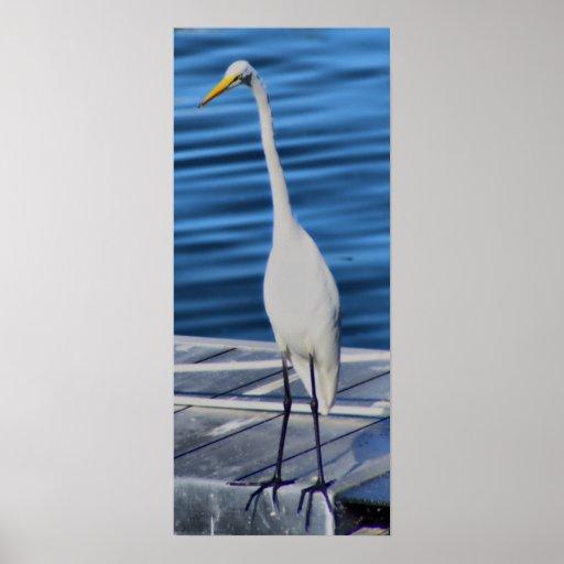 Tall White Crane Print