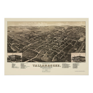 Tallahassee, FL Panoramic Map - 1885 Poster