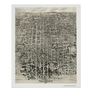 Tallahassee, FL Panoramic Map - 1926 Poster