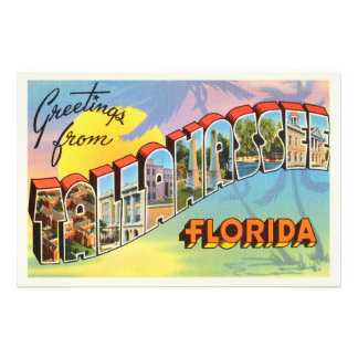 Tallahassee Florida FL Old Vintage Travel Souvenir Photo Print