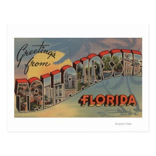 Tallahassee, la Florida - escenas grandes de la Postales