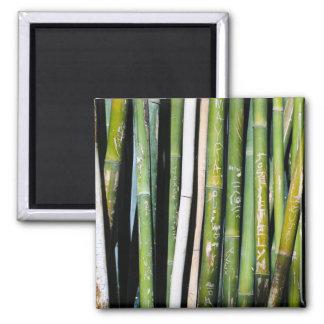 Tallas de bambú imán de frigorífico