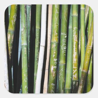 Tallas de bambú pegatina cuadrada