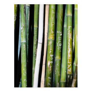 Tallas de bambú postal