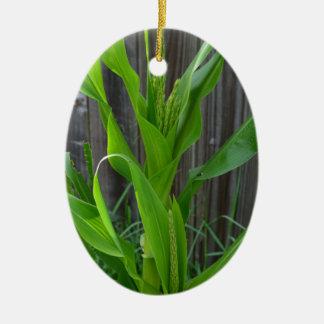 Tallo del maíz ornamento de navidad