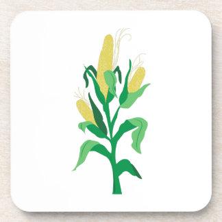Tallo del maíz posavasos