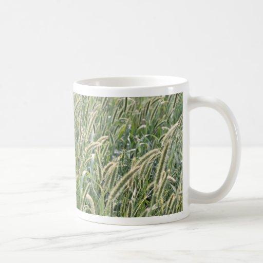Tallos de la cebada taza clásica