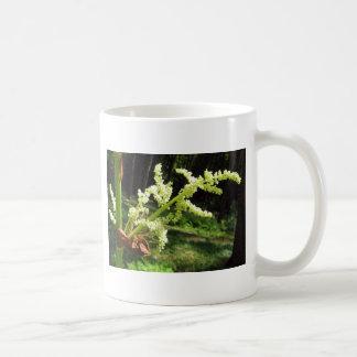 Tallos florecientes del ruibarbo taza básica blanca