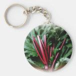 Tallos y hojas frescos del ruibarbo llavero personalizado