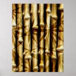 Tallos y Roces de bambú Poster