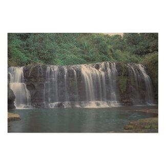 Talofofo Falls Guam Wood Print