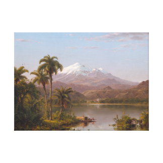 Tamaca Palms along the Magdalena River in Colombia Canvas Print