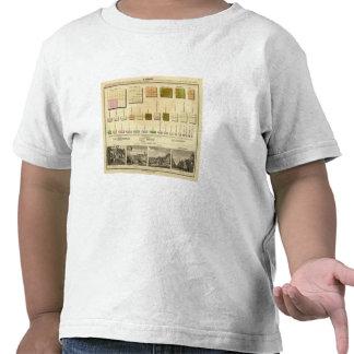 Tamaño, carta de Olney de la población Camisetas
