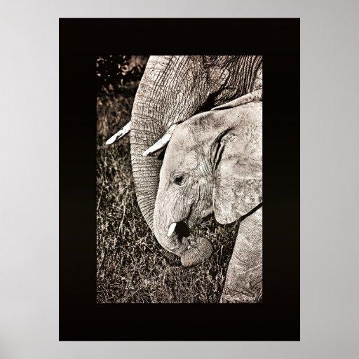 Tamaño COLOSAL del arte africano de la foto del el Póster