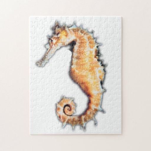 Tamaños del rompecabezas del caballo de mar (2)