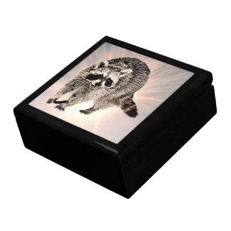 Tamaños llanos de la caja de regalo del Racoon 2