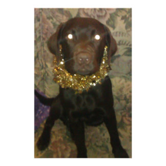 Tamar the idiotic Chocolate Labrador Stationery Paper