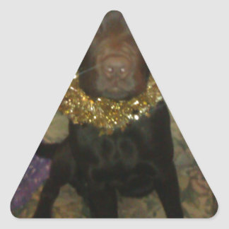 Tamar the idiotic Chocolate Labrador Stickers