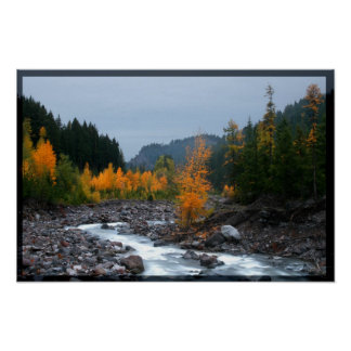 Tamarack and cotton wood poster