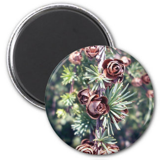 Tamarack Larch Foliage 1 Magnet