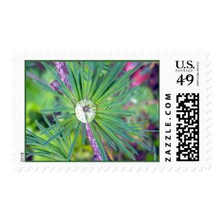 Tamarack Larch Foliage 3 Stamp