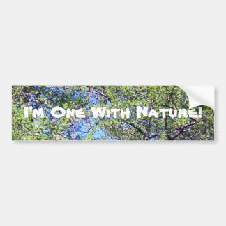 Tamarack Larch Tree 1 Bumper Sticker