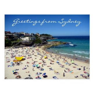 tamarama greetings postcard