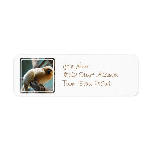 Tamarin Address Mailing Labels