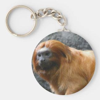 tamarin monkey keychain