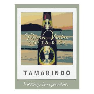 Tamarindo Beach Costa Rica Postcard