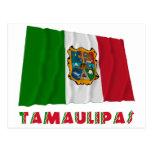 Tamaulipas que agita la bandera oficiosa tarjeta postal