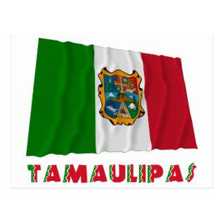 Tamaulipas Waving Unofficial Flag Postcard