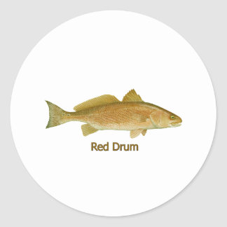 Tambor rojo titulado etiquetas redondas