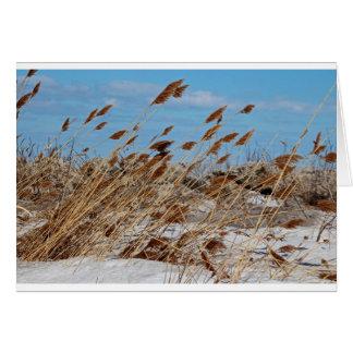 Tame a Wild Wind-horizontal Card