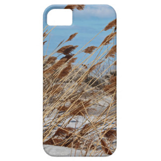 Tame a Wild Wind-horizontal iPhone SE/5/5s Case