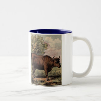 Tame Animals Bull Two-Tone Coffee Mug